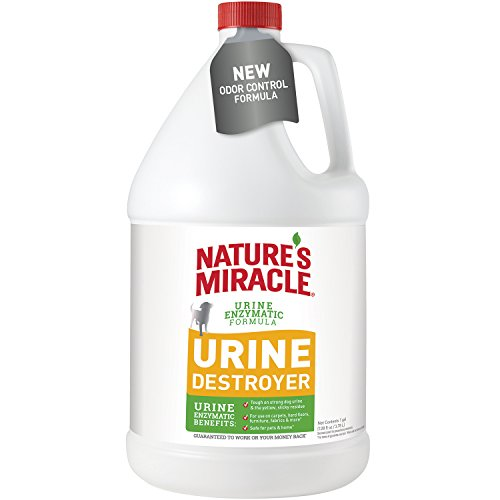 Nature S Miracle Deep Cleaning Pet Stain And Odor Carpet
