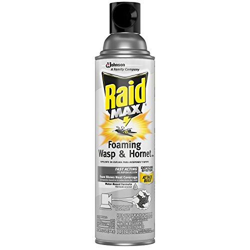 1 – Raid Max Foaming Wasp & Hornet Killer, 13 OZ Pack