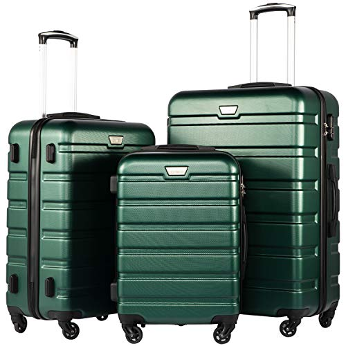 Top 10 TSA Luggage Sets – Luggage Sets